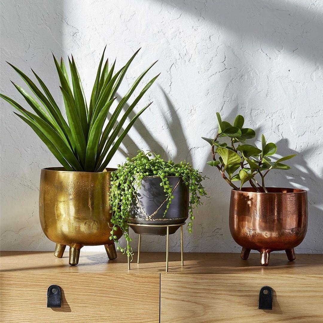 Three metal planters