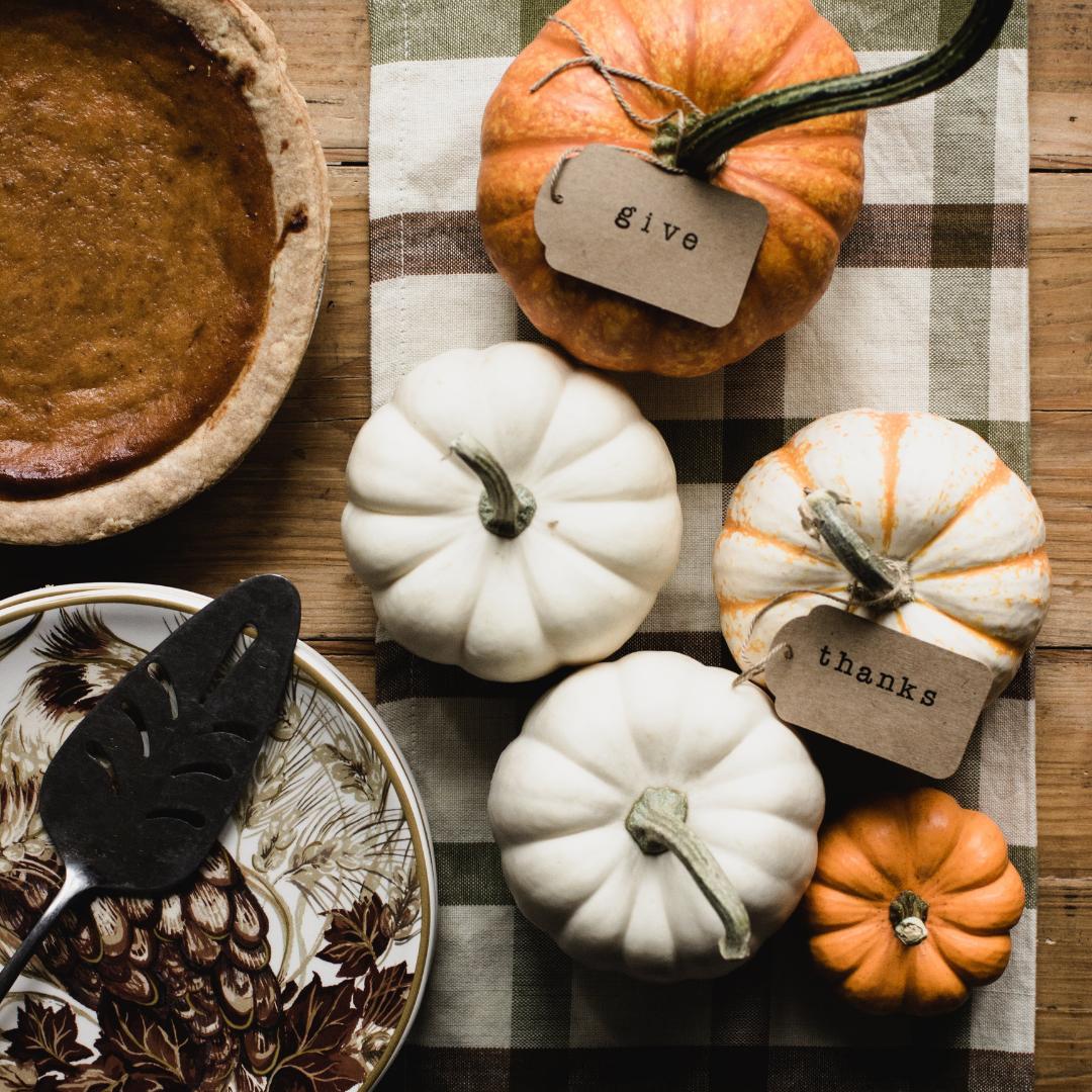 Pumpkin pie and different coloured pumpkins